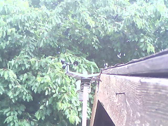 Webcam Reuth b.Erbendorf